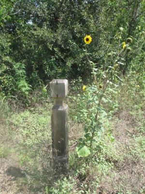 wpid-img_2067-2012-07-14-13-41.jpg