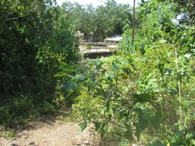 wpid-img_2281-2012-08-6-21-58.jpg